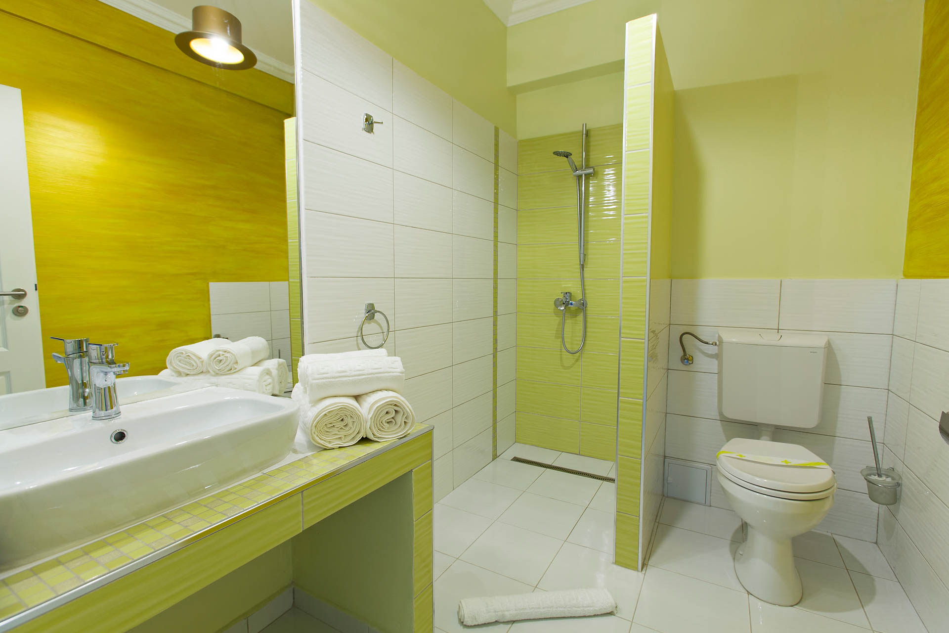 Accommodation Brasov - The Covasna Room - Bathroom